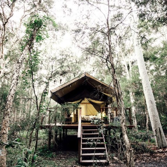PaperBark Camp Glamping NSW